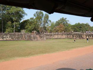 Elefantenterrasse