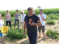 Erich Stekovics präsentiert eine seiner Tomaten, bevor wir alle kosten dürfen
