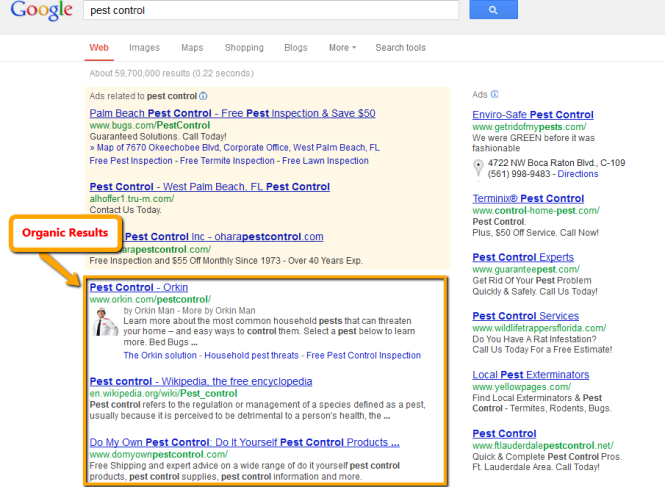 Organic Search Results on Google