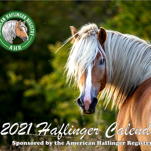 2021 AHR Calendars Available – NOW SHIPPING!