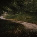 Psykisk ohälsa hos barn och ungdomar kursbild skogsväg.