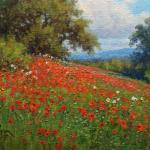 9x12 impressionist landscape painting of red poppies by Byron