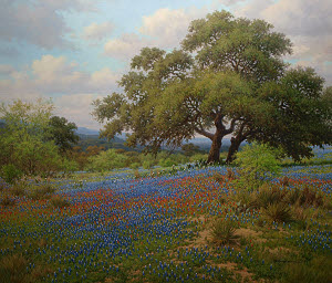 Bluebonnet and Indian paint brush oil painting