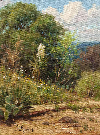 Texas Yucca impressionist oil painting by Byron