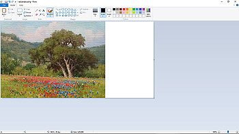 Color Coordinating 2a