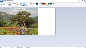 Color Coordinating 3a
