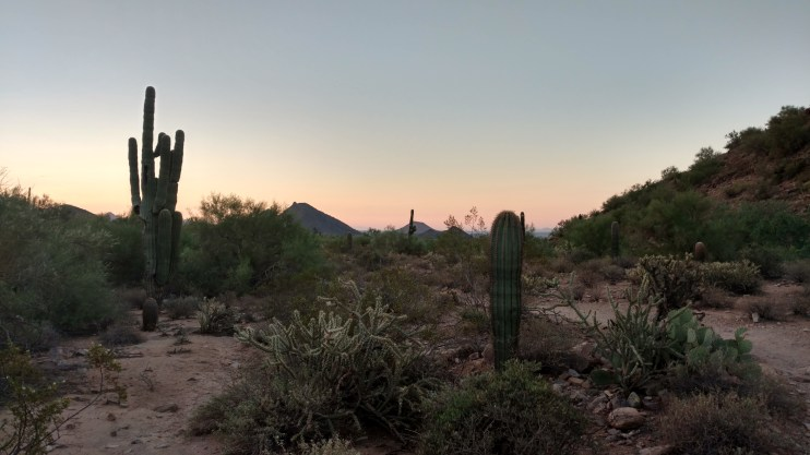 Nothing like the quiet stillness of the desert right before the break of dawn. A sunrise hike in the desert should most definitely be on your bucket list! Lost Dog Wash Trail, Scottsdale AZ. Photo by Natalie Murray