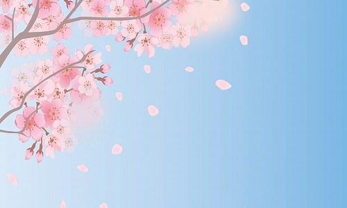春の季語『落花』