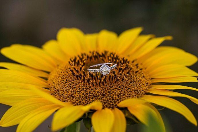 newburyport-massachusetts-wedding-photographer-0009