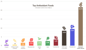 antioxidant levels of foods