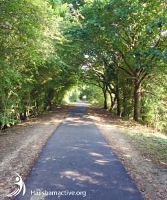Cuckoo Trail walking