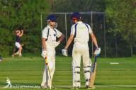 Hailsham Cricket Club game