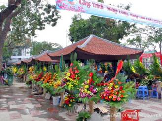 flower stall hai phong