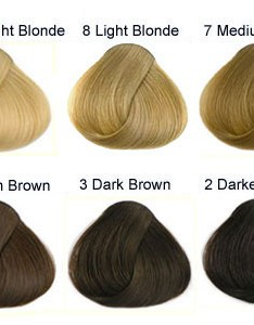 Natural hair colours also international colour charts for hairdressing and makeup rh artist