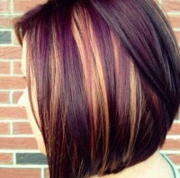 Dark Hair Colors For Fall Ideas 2016 OmbreHairINFO Of 29 ...