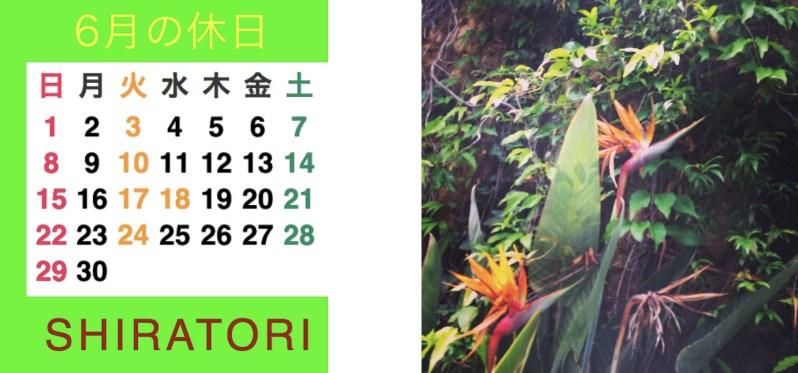 三郷 ヘアサロン SHIRATORI 6月の休日