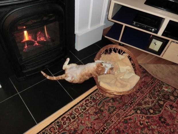 firesidesleep1