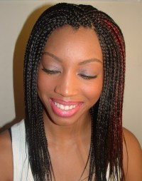 Introduction to Professional Hair Braiding and Extensions ...