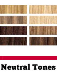 chart of the cool neutral and warm hair color tones also shades selection guide rh haircolorcode