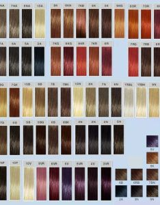Loreal inoa vs goldwell topchic color conversion chart also colour hair colar and cut style rh hairdiy