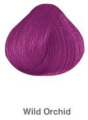 wild orchid hair color - colar
