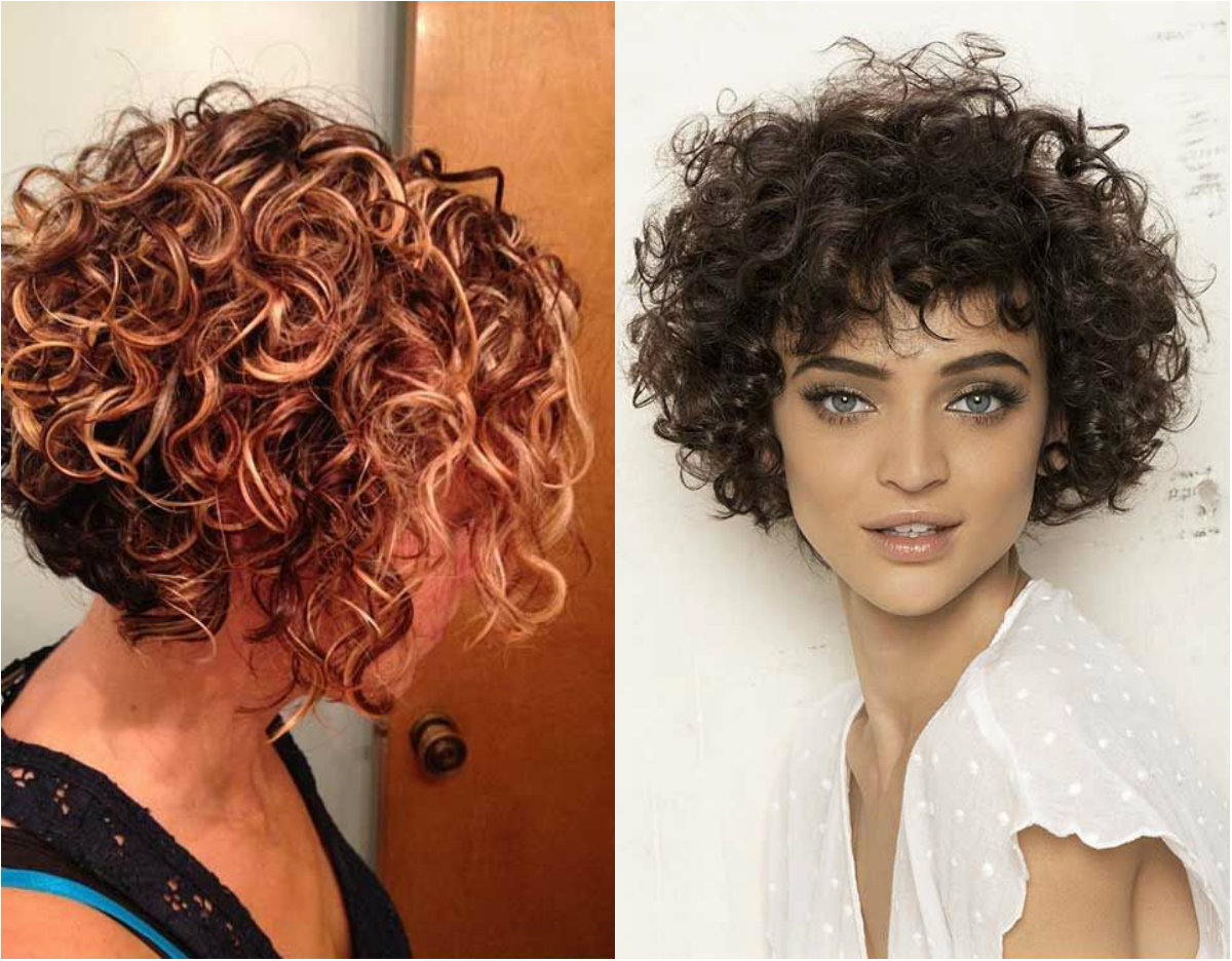 Lovely Short Curly Haircuts You Will Adore  Hairdromecom
