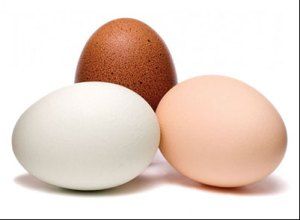 eggs-against-hair-loss-baldness