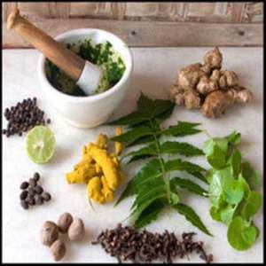 best-ayurvedic-treatments-for-hair-loss