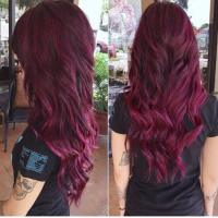 Plum Hair Color Shades | www.pixshark.com - Images ...