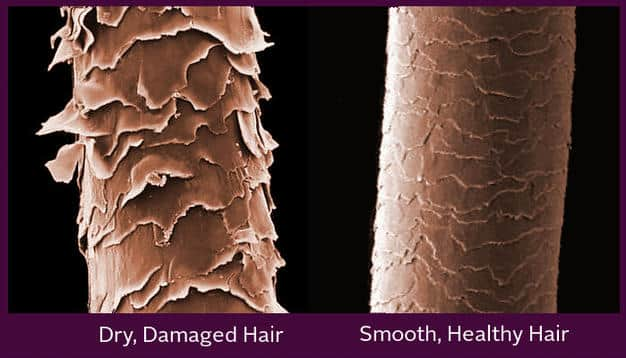 Air pollution affect hair quality