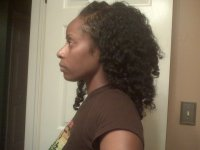 rinses for natural hair semi permanent hair dye and clear ...