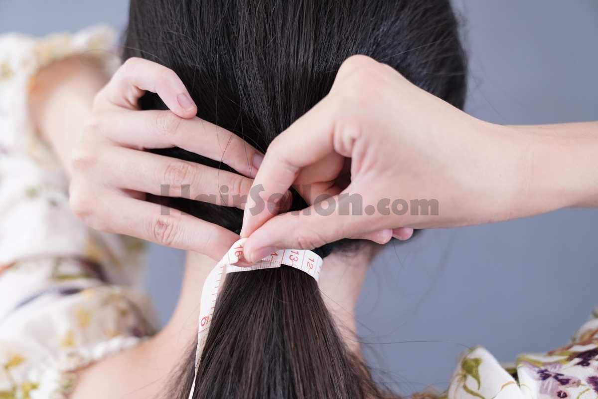 Optimized-Hair Thickness 13cm 5in