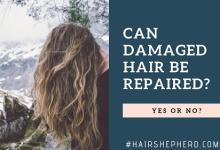 Can Damaged Hair Be Repaired