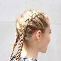 21 Cutest Dutch Braid Hairstyles for 2017 - Sneak a Peak