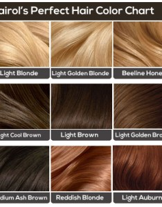 Colors for light brown hair chart also the ultimate guide rh hairstylehub
