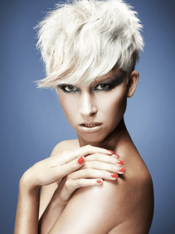 2014 Pixie Hairstyles Ideas 2019 Haircuts Hairstyles