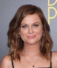 Amy Poehler Medium Wavy Casual Hairstyle - Chocolate ...