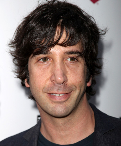 David Schwimmer Casual Medium Wavy Hairstyle