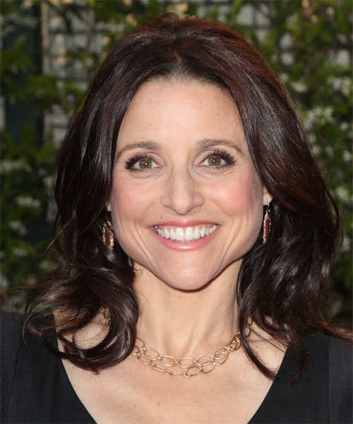 Julia Louis Dreyfus Hairstyles For 2017 Celebrity Hairstyles By