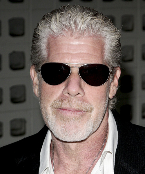 Ron Perlman Short Curly Casual Hairstyle Grey Hair Color