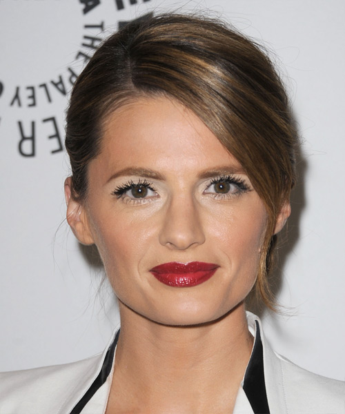 Stana Katic Long Straight Formal Updo Hairstyle With Side