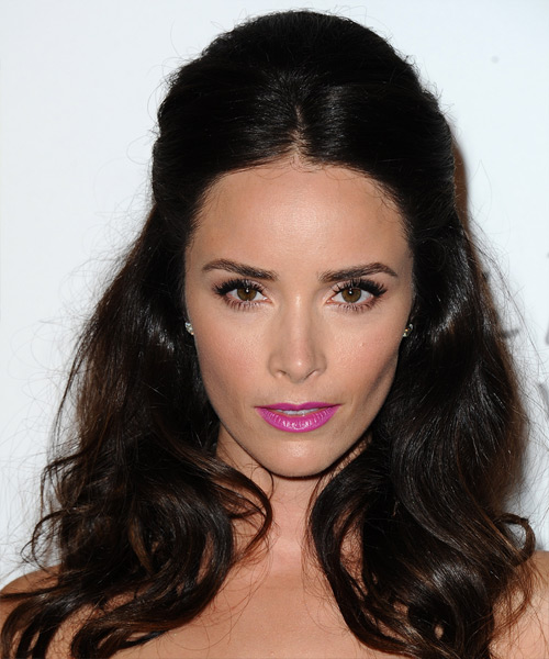 Abigail Spencer Long Straight Casual Half Up Hairstyle