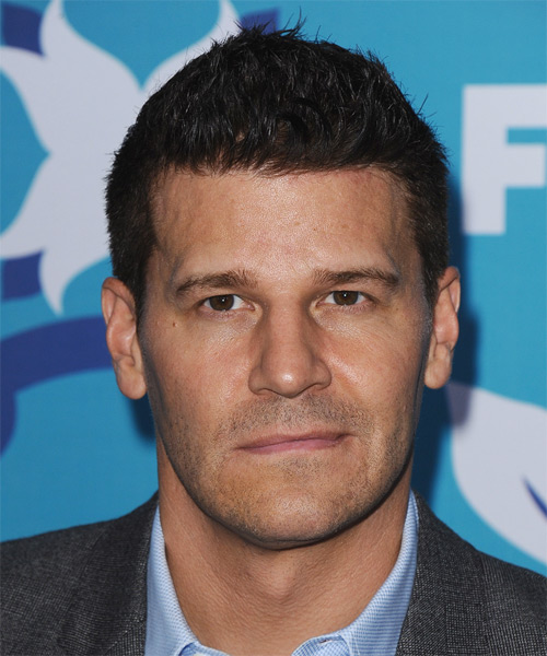 David Boreanaz Hairstyles Hair Cuts And Colors