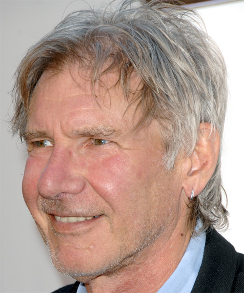 Harrison Ford Short Straight Casual Hairstyle Grey Hair