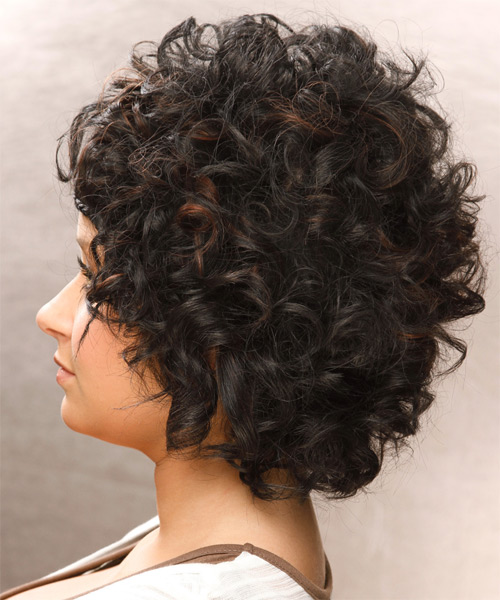 Short Curly Casual Braided Hairstyle Black Hair Color