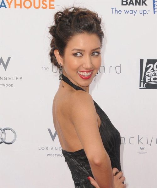 Renee Puente Formal Long Curly Updo Hairstyle  Brunette Hair Color