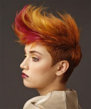 short wavy copper red and two-tone