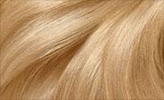 Hair Color Chart: Light Golden Blonde