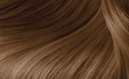 Hair Color Chart: Butterscotch