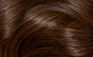 Hair Color Chart: Chocolate Brown